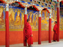 Witnessing Living Heritage of Buddhism in Ladakh
