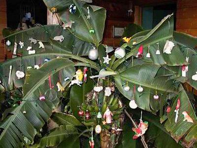 mango-xmas-tree