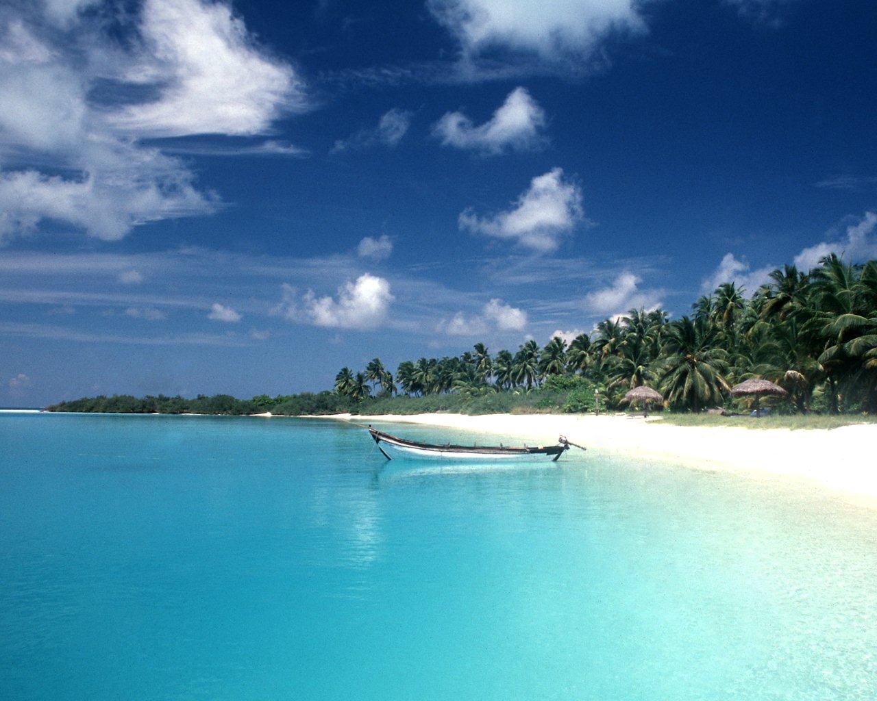 Havelock Islands, Andam