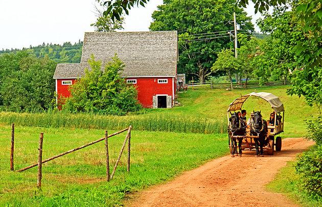 Ross Farm Museum