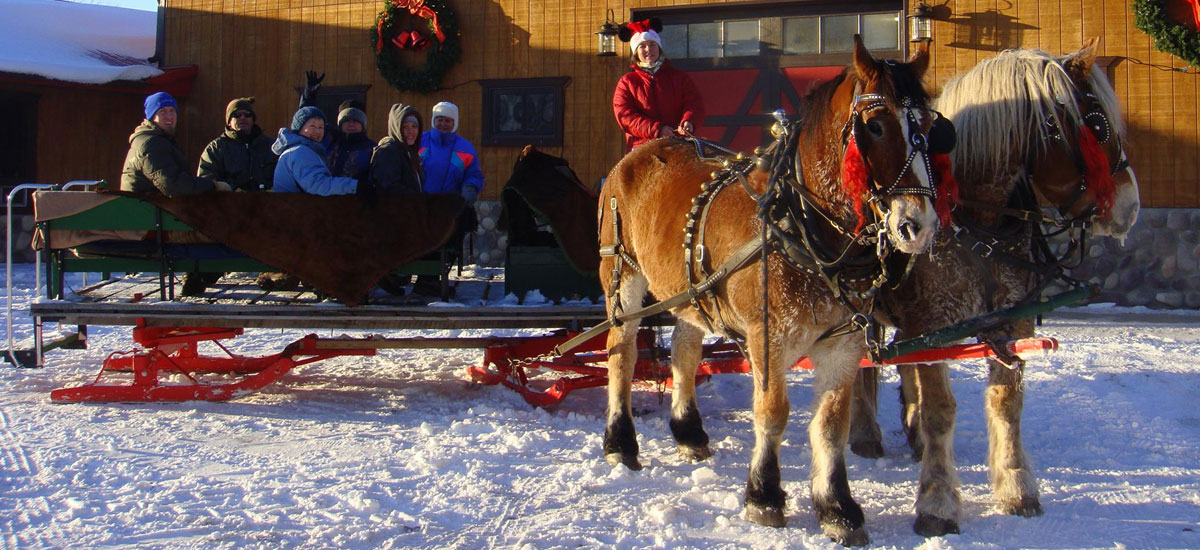 Ride A Horse Sleigh Or Dog Powered Sled